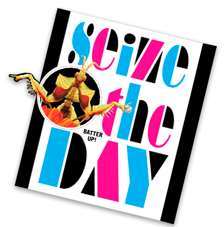 Graphic Design - seize the day